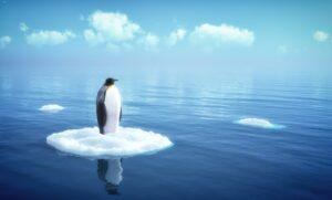 """Aktualizácia """"Penguin 4.0"""" je vonku"""