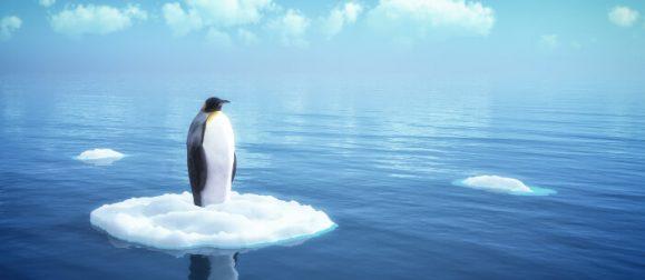 penguin4_update
